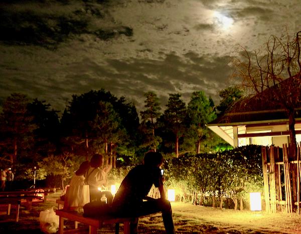 静かな和の空間で月を眺める。絵に描いたようなお月見風景。